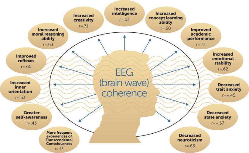 brain-coherence-chart